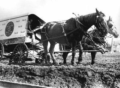 Horses And Delivery Wagon Stuck In The Mud