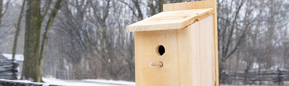 Prairie Pursuits: Cedar Birdhouse