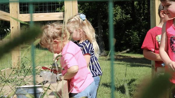Exploring during Preschool on the Prairie