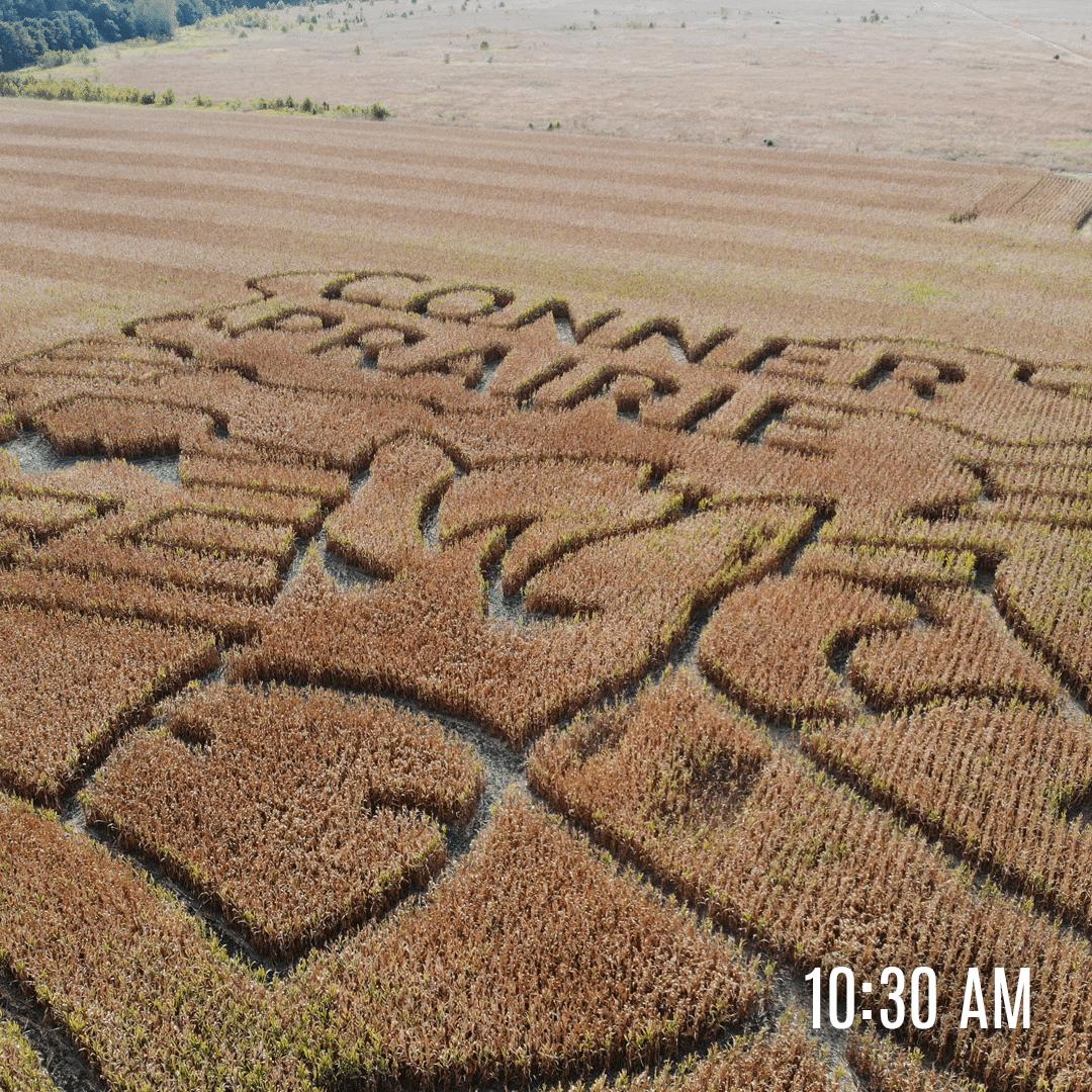 Aerial photo of Conner Prairie's 2020 corn maze