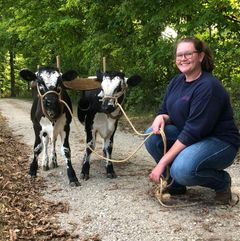 Emily Nyman with our oxen in training
