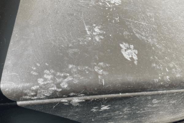 Raccoon prints on trash can