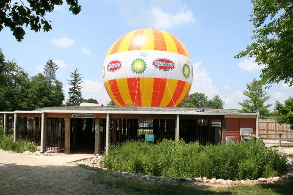 2009 Balloon at 1859 Balloon Voyage