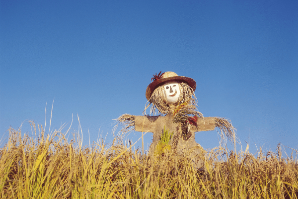 Girl Scarecrow In A Dress And Hat In A Field