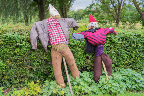 One Adult And One Child Sized Scarecrow