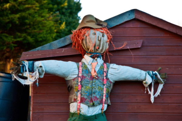 Scarecrow In Colorful Dress Clothes
