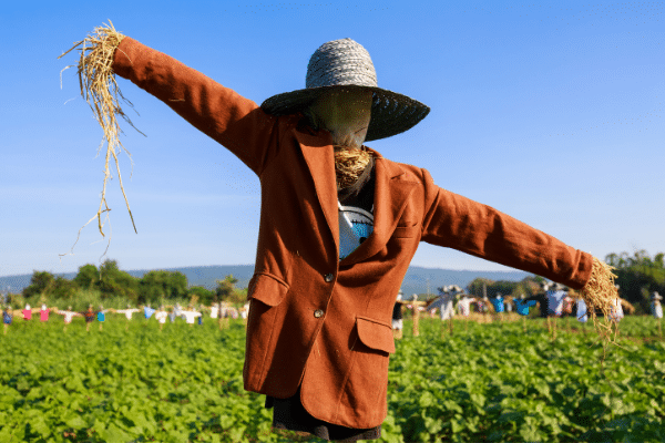 Scarecrow In Suit Jacket And Hat