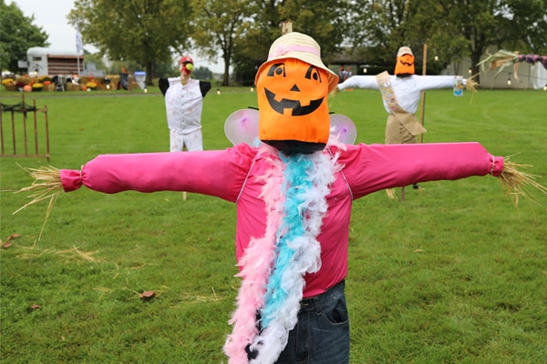 Scarecrow with jack o lantern face and wearing a feather boa
